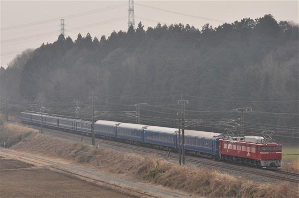 EF81-133-1