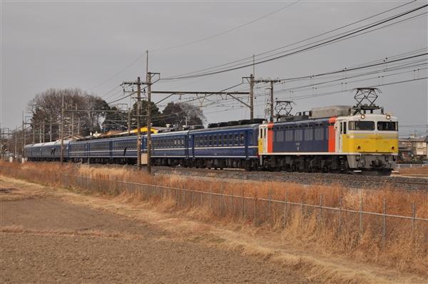 EF81-99