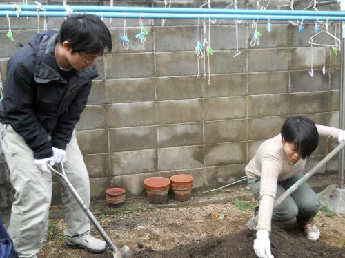 hatakebu_convert_20121214152249.jpg