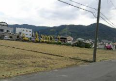 wakayama1210.jpg