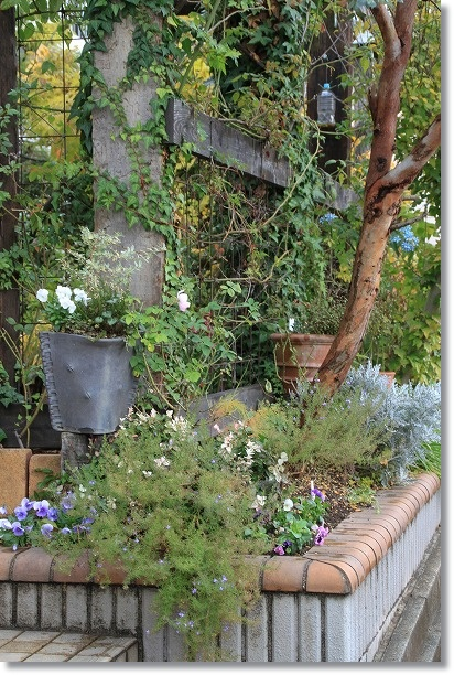 門前花壇 4