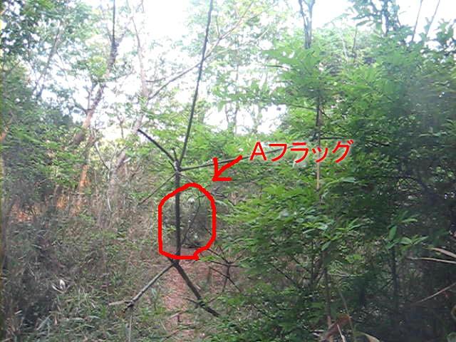 V1_12_05_06_022.jpg