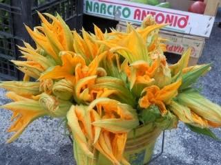 ズッキーニ花
