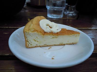 わんこのヨーグルトチーズケーキ