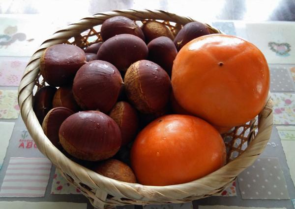 柿と栗14091