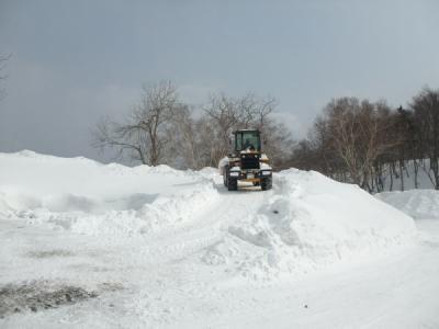 雪の坂をものともせず進んでいきます。