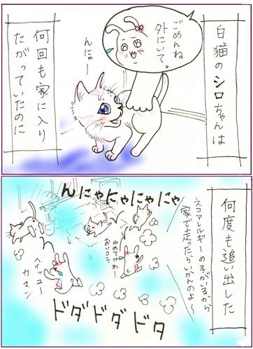 天才なるおさなご達 ~我輩は書生猫である~-白猫2ちゃん