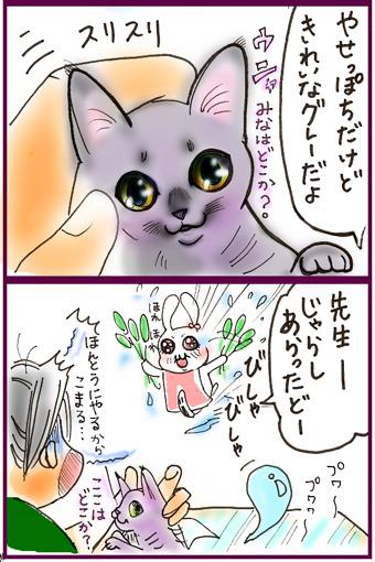 天才なるおさなご達 ~我輩は書生猫である~-2仔猫の色