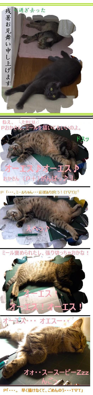 天才なるおさなご達 ~我輩は書生猫である~-9月ですよ。
