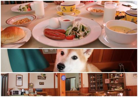 page 清里 バーニーズ 朝食前の日和