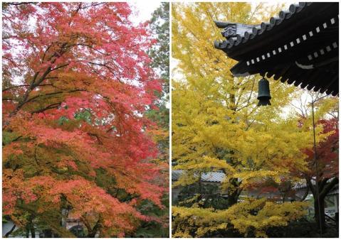 page 南禅寺の紅葉