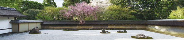 京都4k春