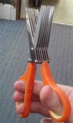 scissor5_s3.jpg