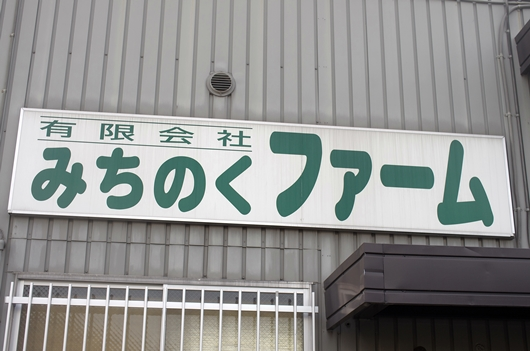 K55_2456.jpg