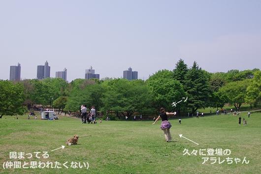 K57_9753.jpg