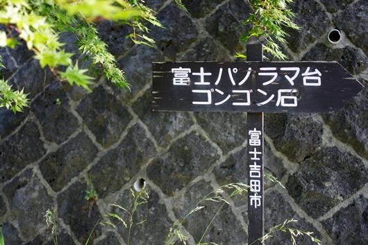 K58_1360.jpg