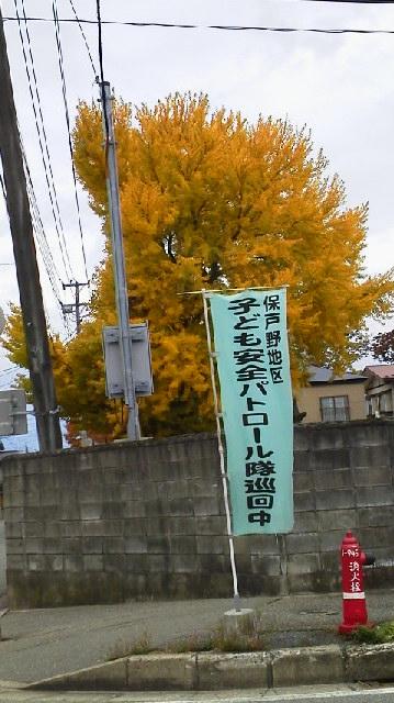 2012110109490000.jpg