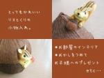 risukuri_20100906144510.jpg