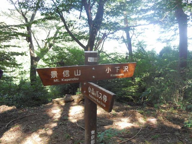 景信山12.10 (10) (640x480)