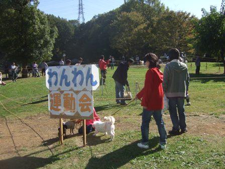 2012・11・4運動会看板
