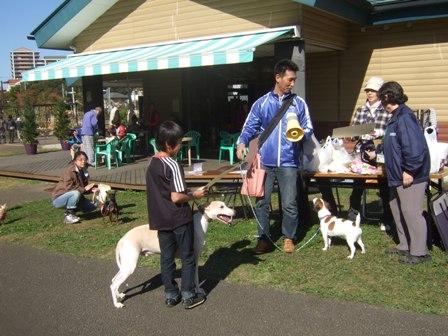 2012・11・4運動会・大型犬表彰