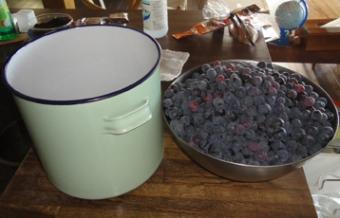 201410 良く洗った容器にブドウの粒を投入