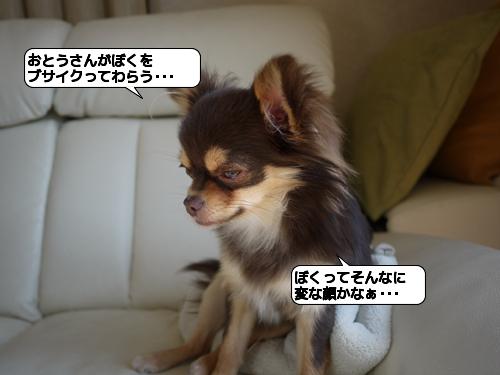 20110301_172312.jpg