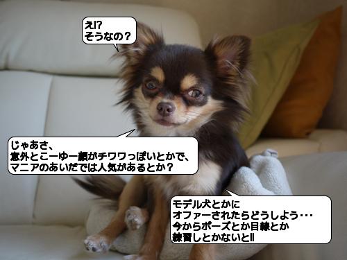 20110301_173015.jpg