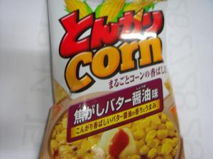 DSC05126_convert_20101127192900.jpg