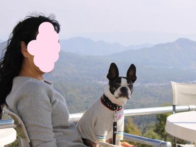 パンチ 8歳の誕生日旅行 軽井沢編 3