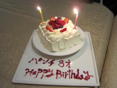 パンチ 8歳の誕生日旅行 軽井沢
