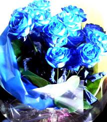 ハート温暖化♪-青い薔薇☆