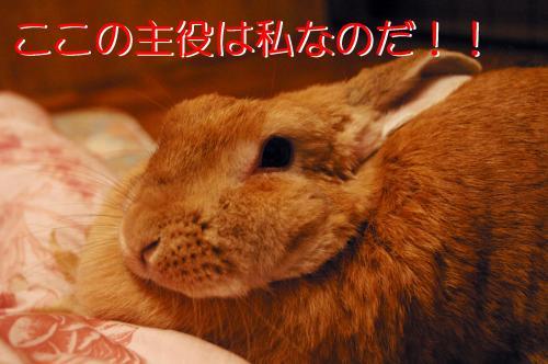 00326謾ケ_JFR_convert_20110202142047
