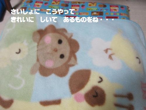 012-2_20111220182509.jpg