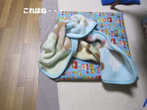 017-2_20111220182510.jpg