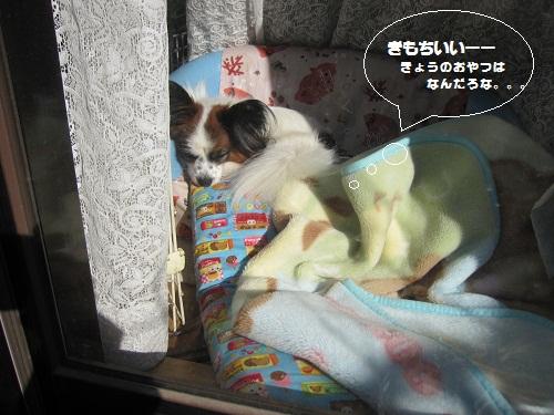 031-2_20120129192736.jpg