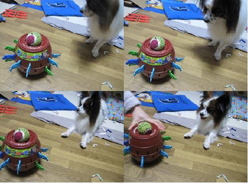ボールくんの災難2