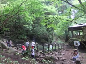 森と風穴300