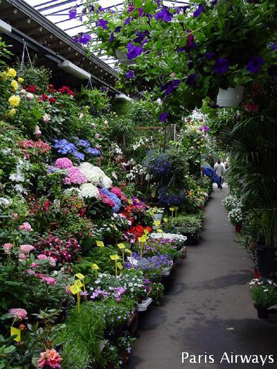 シテ 花市 パリ