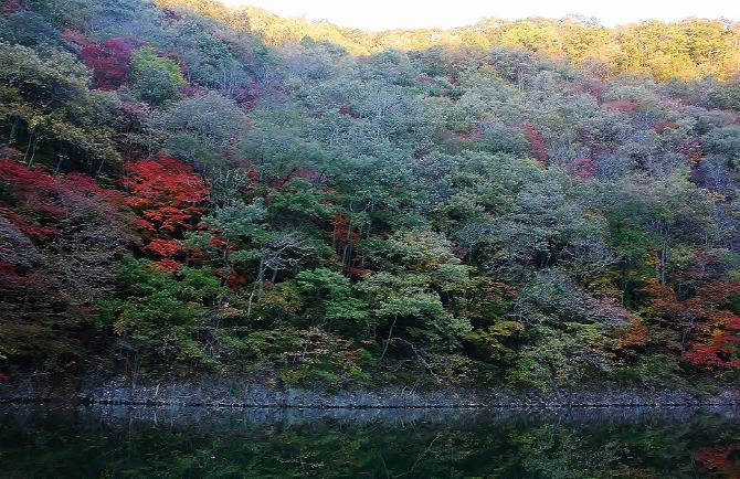 神龍湖から紅葉を望む