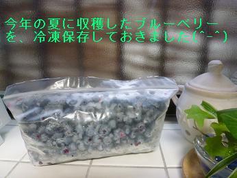 ①冷凍ブルーベリー