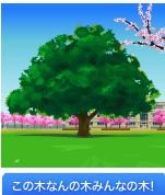 この木なんの木(桜並木の校舎)