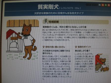 231212+011_convert_20111213210718.jpg