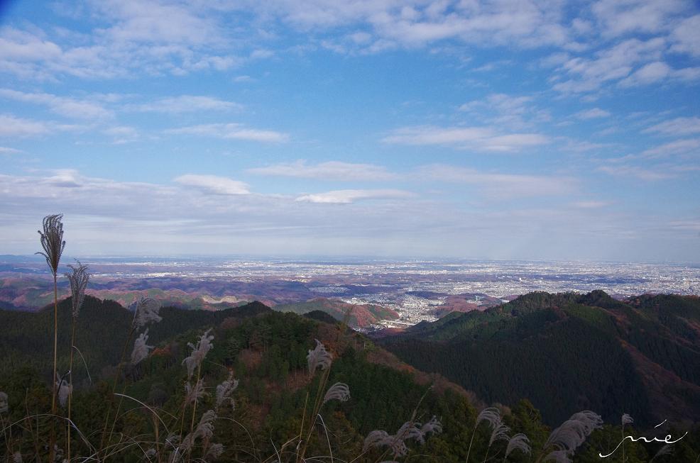 神奈川方面を望む