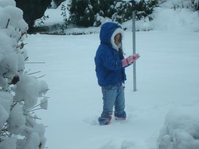 sophia in the snow