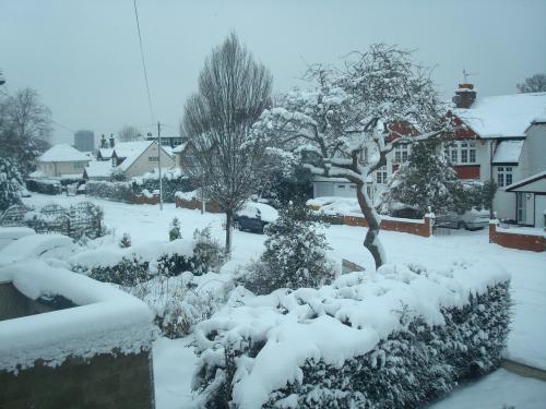 snow 3rd day3