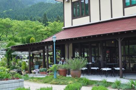 herbillcaffe6.jpg