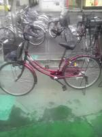 酒田観光用の自転車