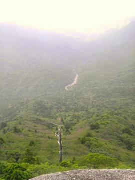 白谷雲水峡 太鼓岩