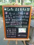 20110807早朝ゼブラ (46)-1